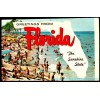 Florida, Greetings From The Sunshine State - FL Postcard $2 Box