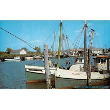 Ocean City, Maryland Commercial Fishing Boats and Docks Americas